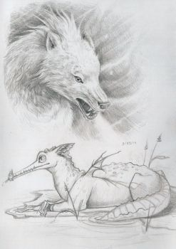 Wolf and dragon sketch by e-pona