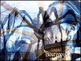Louise Bourgeois by comteskyee