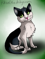 Kitty :3 by Hazelthedragoness
