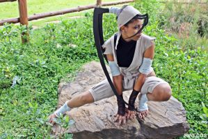 Ibuki Cosplay V by riinechan