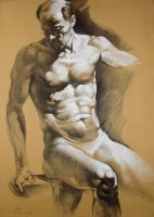 Male Model (charcoal and white pencil on tinted by AdrianMoraru