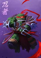 RAPHAEL - NINJA TURTLES by SOLOMONSTA