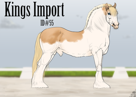#55 Kings Import by emmy1320