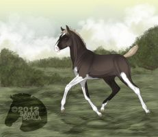 Beautiful Illusion Old Foal Ref not owned anymore by SarahScala