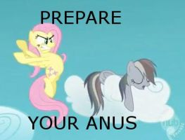 FlutterDash PREPARE YOUR ANUS by TF2GuyTF2