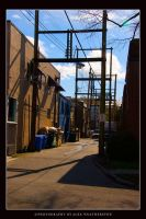Just an alley by Weatherstone