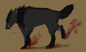 Wolf design commission by Nala-l-Taiir