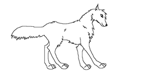 free wolf lineart by Horses-Echo