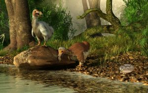 Dodos on the Riviere Tamarin by deskridge