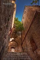 Old city of Nablus by Mufeed