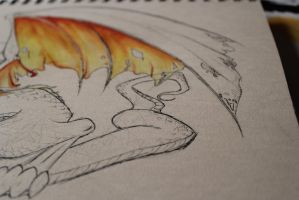 Dragon Stage 2 (close up) by RougeCerberus