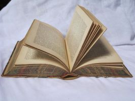 Open book stock by rustymermaid-stock