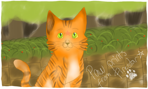 Firestar sent you a message! by xMarrux