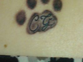 Paw Print number 3 by arcticfox812