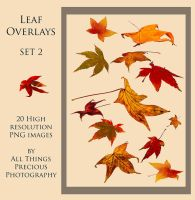 Leaf Overlays SET 2 PNG by AllThingsPrecious