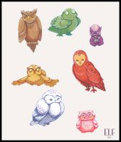 Owls by Klassie
