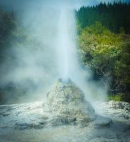 Lady Knox Geyser by Jacia