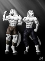 The Twins Stallions by SymbolHero