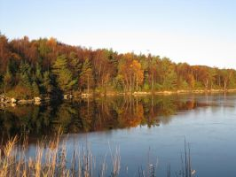 autumn reflections by Charon1