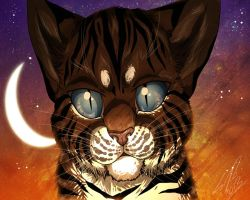 Hawkfrost by RussianBlues
