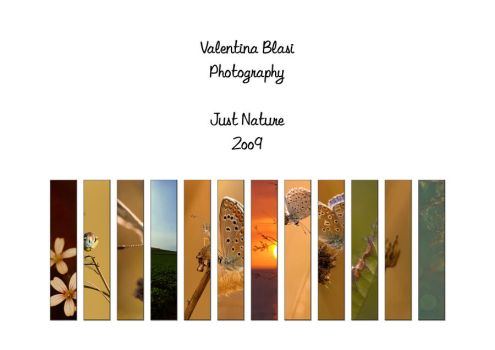 2009 Calendar - Just Nature by Amersill