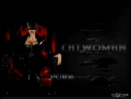 Catwoman.. by ryansd