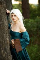 Dragon Age Origins: Elvhen by HayleyElise