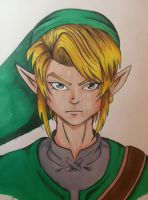 :Link: by MsAnnThrope