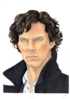 Sherlock - The hounds of Baskerville by Melnia