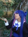 Cosplay Stocking Anarchy by MarcelaHyuuga