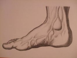 Foot - copyart by Hermy46