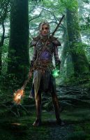 Dragon Age Elven Mage by uncannyknack