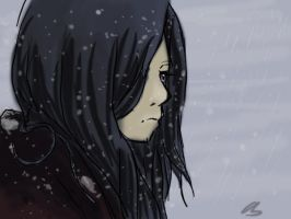 Cold snow by AoiKita