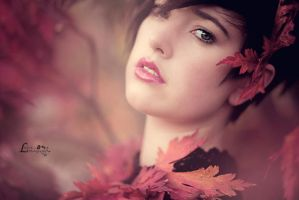 autumn by LisbethPhotography