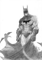 Batman by E-r-1-C