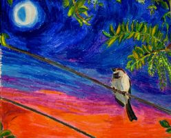 Sparrow Dream by Lucy-Merriman