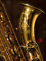Tribute to Adolphe Sax (filtered) by tonio48
