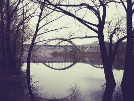 forest park on Oka river by nrhk-shb