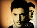 Jensen Wallpaper . by flipskiosk