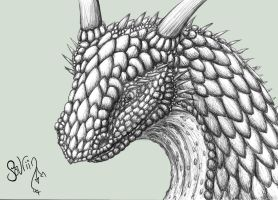 Sketchy Dragon Head by Sovriin