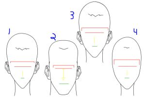 Basic head shapes by Pjczar