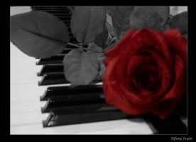 music among the roses by brunette808