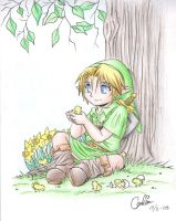 tLoZ: Young Link by Carro-chan