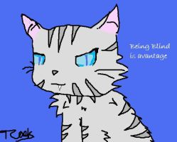 Jayfeather by Cloud-Strife-FF-VII