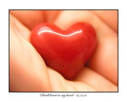 Small heart in my hand by lexidh