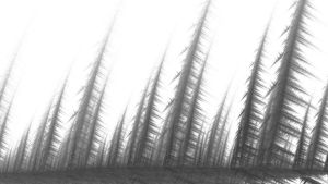 Forest By Lake 1920x1080 by Sown-Laughter