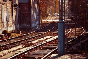 Rails by anampi