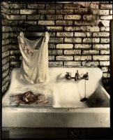 Evidence-the kitchen sink by lauren-rabbit