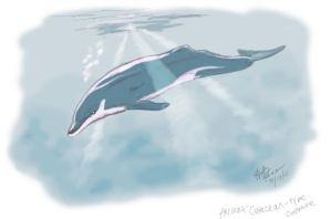 Concept :: Ancient Dolphin? by autumnalangel