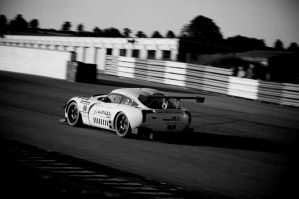 Sagaris V8 GT -Black and White by TVRfan